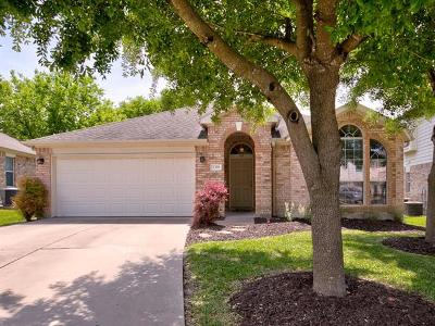 Round Rock Single Family Home For Sale: 2328 Paradise Ridge Dr