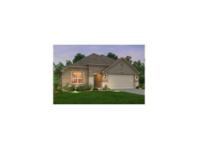 Round Rock Single Family Home For Sale: 3312 De Torres Cir