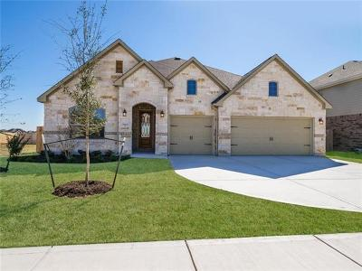 Pflugerville Single Family Home For Sale: 19304 Chayton Cir