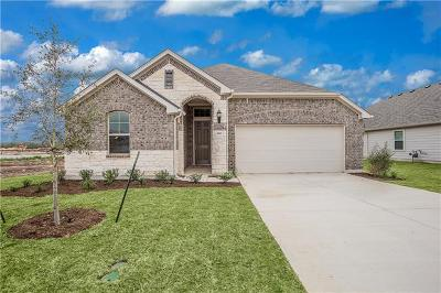 Hutto Single Family Home For Sale: 220 Clearlake Dr