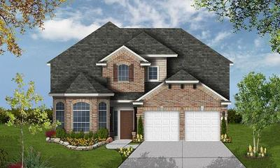 Pflugerville Single Family Home Active Contingent: 20720 Snow Bunting Ln