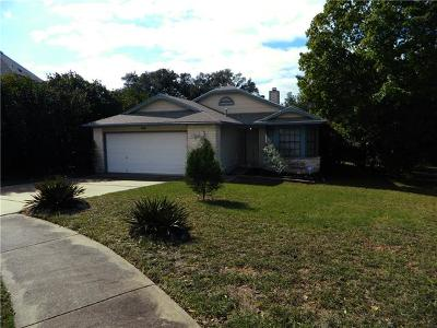 Austin Single Family Home For Sale: 905 Peggotty Pl