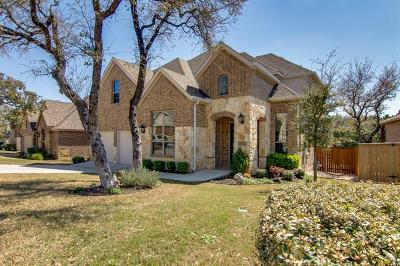 Round Rock Single Family Home For Sale: 3821 Skyview Way