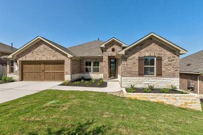 Kyle Single Family Home For Sale: 273 Cypress Forest Dr