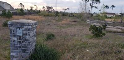 Bastrop County Residential Lots & Land For Sale: 175 McAllister Rd