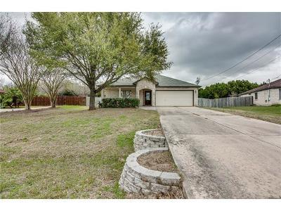 Buda, Kyle Single Family Home For Sale: 400 Millington Ln