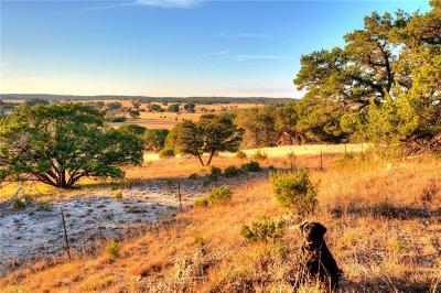 Driftwood Residential Lots & Land For Sale: 007 W Prarie View Trail