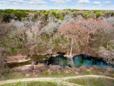 Driftwood Farm For Sale: 18901 Fm 1826