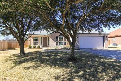 Round Rock Single Family Home Pending - Taking Backups: 17102 Zola Ln