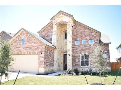 Pflugerville Single Family Home For Sale: 4105 Godwit Dr