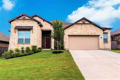 Kyle Single Family Home For Sale: 314 Cypress Forest Dr
