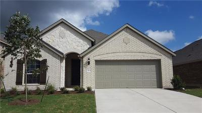 Pflugerville Single Family Home For Sale: 3904 Eland Dr