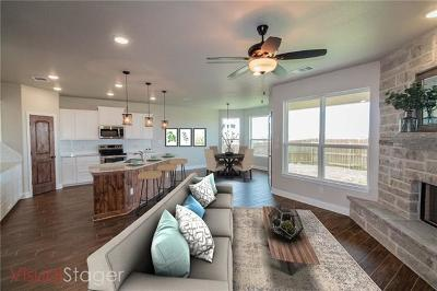 Williamson County Single Family Home For Sale: 325 Western Sky Trl