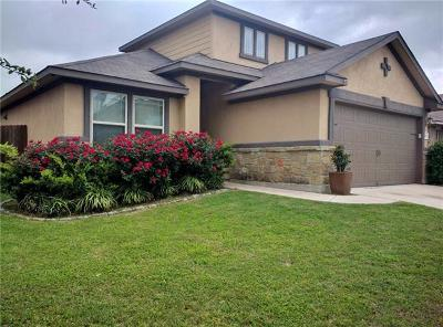 Pflugerville Single Family Home For Sale: 19108 Mangan Way