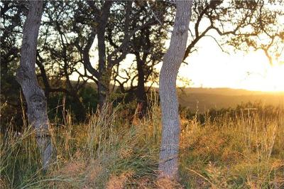 Dripping Springs Residential Lots & Land For Sale: 210 N Canyonwood Dr