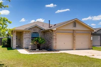 Kyle Single Family Home Active Contingent: 132 Jade Lake Cv