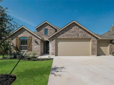 Highlands At Mayfield Ranch Single Family Home For Sale: 3831 Ashbury Rd