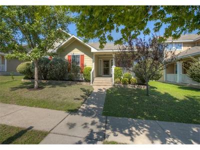 Kyle Single Family Home For Sale: 653 Sampson
