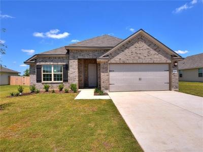 Kyle Single Family Home For Sale: 684 Evening Star Dr