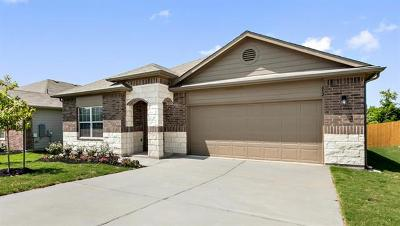 Georgetown Single Family Home For Sale: 613 Donegal Ln