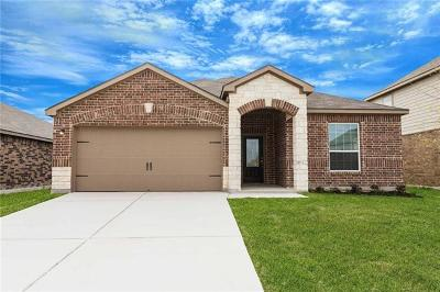 Kyle Single Family Home For Sale: 1397 Violet Ln
