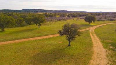 Burnet County, Lampasas County, Bell County, Williamson County, llano, Blanco County, Mills County, Hamilton County, San Saba County, Coryell County Farm For Sale: 02 Cr 308