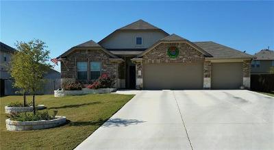 Kyle Single Family Home For Sale: 142 Panalero Cv