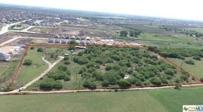 New Braunfels Residential Lots & Land For Sale: 560 Michelson Ln