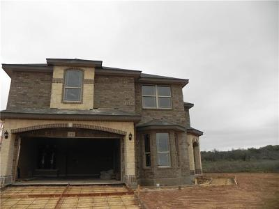 San Marcos Single Family Home For Sale: 3121 Brand Iron