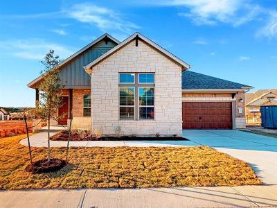 Austin Single Family Home For Sale: 123 Village Oak