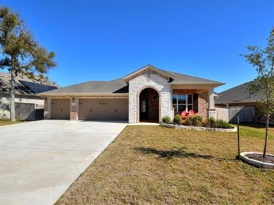 Kyle Single Family Home For Sale: 400 Cypress Forest Dr