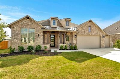 Austin Single Family Home For Sale: 475 Stone River Dr