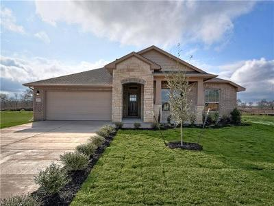 Bastrop County Single Family Home For Sale: 119 Breakwater