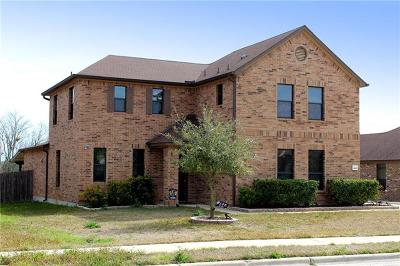 Pflugerville Single Family Home For Sale: 19105 Pencil Cactus Dr