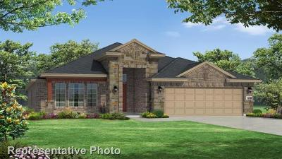 Round Rock Single Family Home For Sale: 3309 Bianco Ter