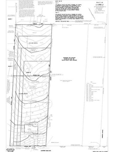 Austin Residential Lots & Land For Sale: 1713 Waterloo Trl