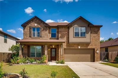 Kyle Single Family Home For Sale: 725 Apricot Dr