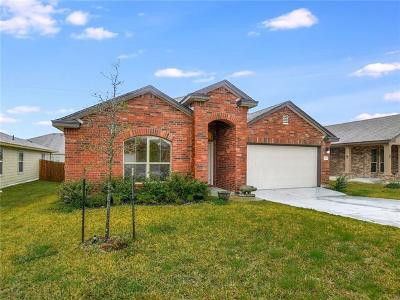 Williamson County Single Family Home For Sale: 137 Igneous Ln