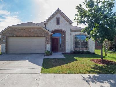 Hays County Single Family Home For Sale: 437 Tranquility Mtn