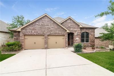 Austin Single Family Home For Sale: 1523 Trinity Hills Dr