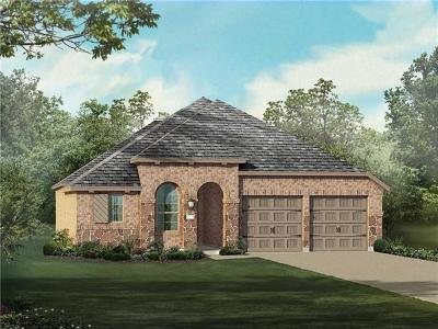 Round Rock Single Family Home For Sale: 2933 Consuelo Cswy