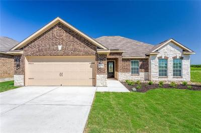 Kyle Single Family Home For Sale: 1507 Twin Estate Drive