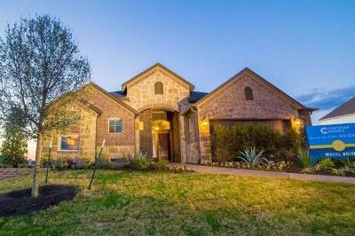 Buda Single Family Home For Sale: 335 Tangerine Dr
