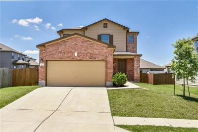 Hays County, Travis County, Williamson County Single Family Home For Sale: 9104 Winter Haven Rd