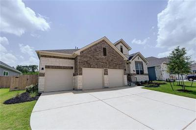 Dripping Springs Single Family Home For Sale: 207 Arbor Bay Dr