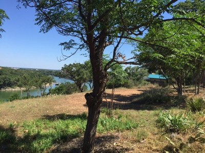Spicewood TX Residential Lots & Land For Sale: $219,000