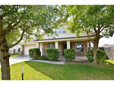 Williamson County Single Family Home For Sale: 115 Holmstrom St