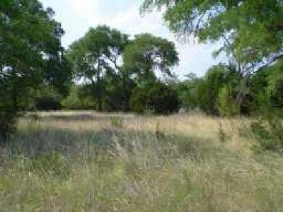Hays County Residential Lots & Land For Sale: 10923 West Cave Blvd