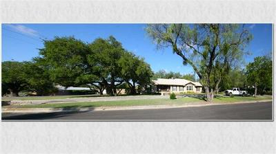 Lampasas Single Family Home For Sale: 310 S Porter St
