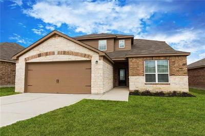 Kyle Single Family Home For Sale: 1591 Violet Ln